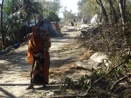 バングラデシュサイクロン災害支援写真