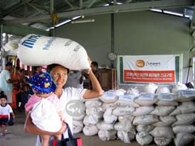 ミャンマーサイクロン災害支援